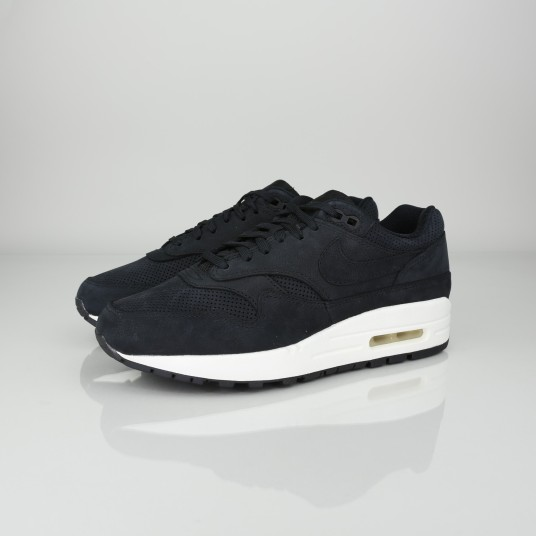 WMNS AIR MAX 1 PINNACLE